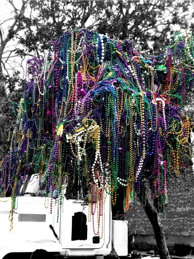 New Orleans Mardi Gras Bead Tree. Revelers decided to fill this tree with all these colorful beads royalty free stock photos