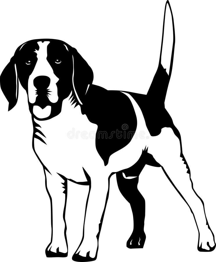 Beagle. Black and white illustration of a beagle dog stock illustration