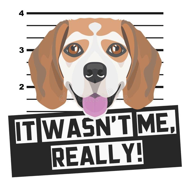 Beagle de la fotograf?a de detenido del Mugshot stock de ilustración