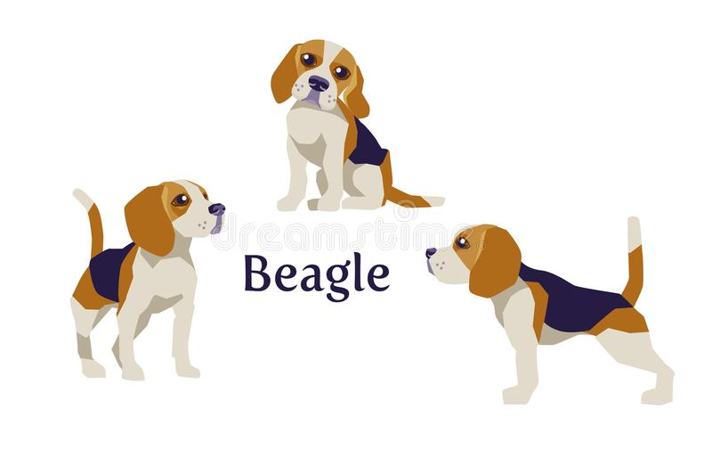 Beagle in different poses isolated vector illustration