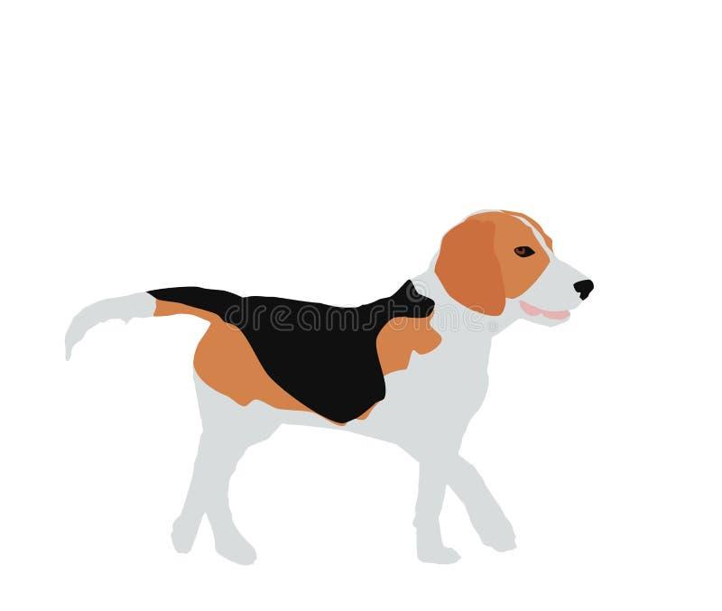 Beagle dog on white background, flat design, vector eps 10 royalty free illustration