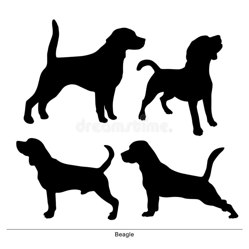 Beagle. funny puppies. Beagle. Dogs are posture. Funny puppies stock illustration