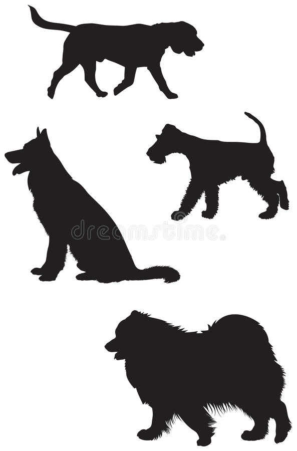 Beagle, German shepherd, Fox Terrier. Samoyed silhouettes royalty free illustration