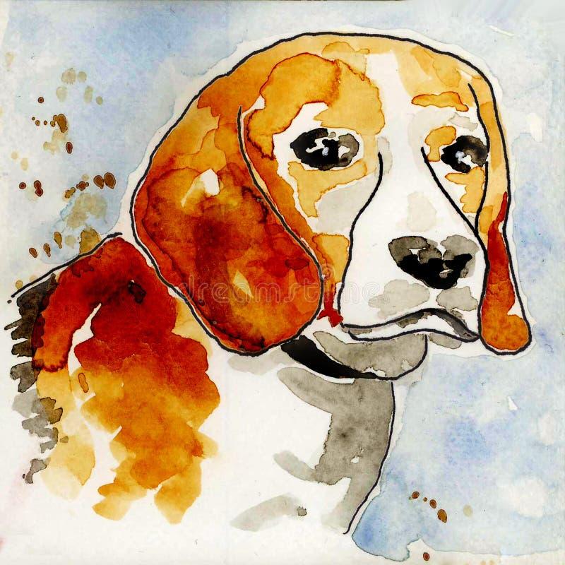 Beagle Psia głowa waterpainting ilustracji
