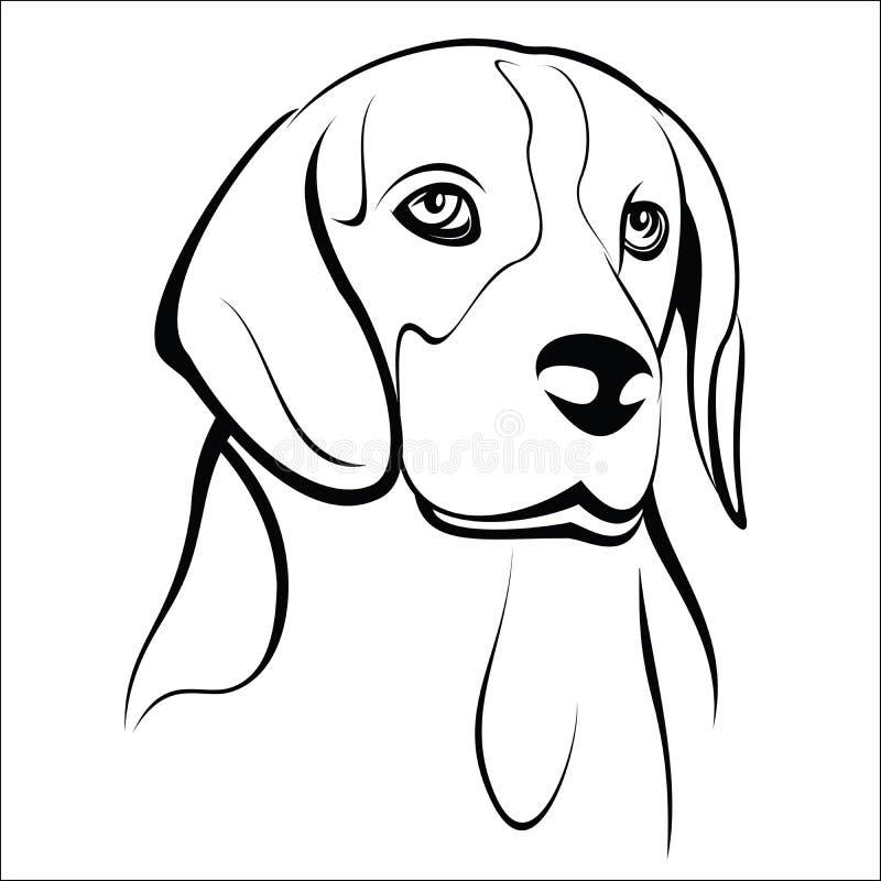 Beagle. Vector illustration - Beagle head on a white background royalty free illustration