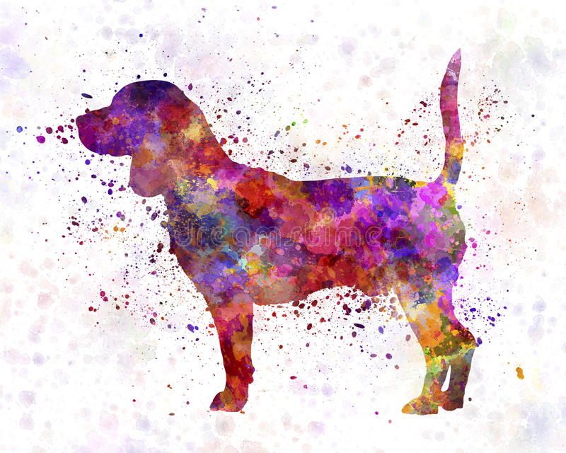 Beagle in watercolor. Beagle in artistic abstract watercolor stock illustration