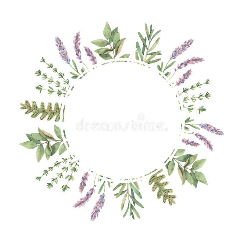 beak dekoracyjnego latającego ilustracyjnego wizerunek swój papierowa kawałka dymówki akwarela Rama z botanicznymi zielonymi liść ilustracja wektor