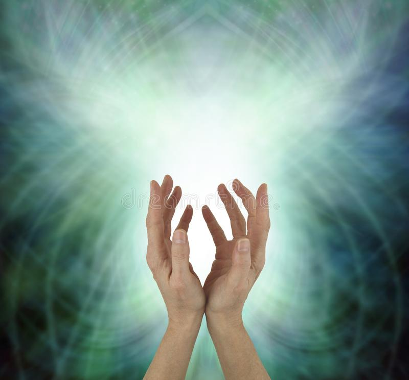 Beaming Beautiful Heart Chakra Healing Energy. Female hands reaching upwards sending heart energy out against a green energy matrix formation background with stock photo