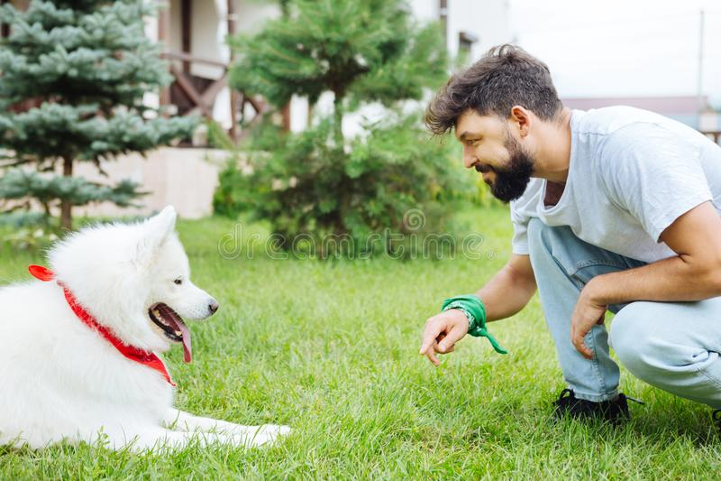 Beaming cheerful man looking at his lovely cute dog stock photo