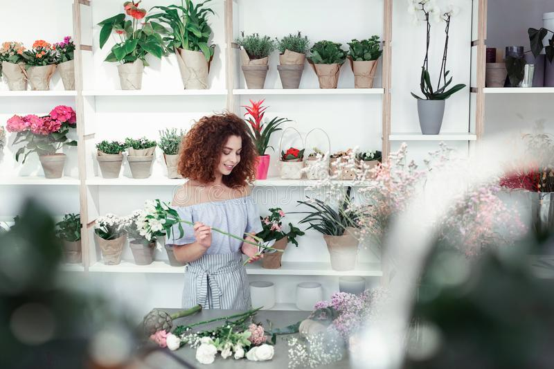 Beaming curly woman working as professional florist in filled room stock photo