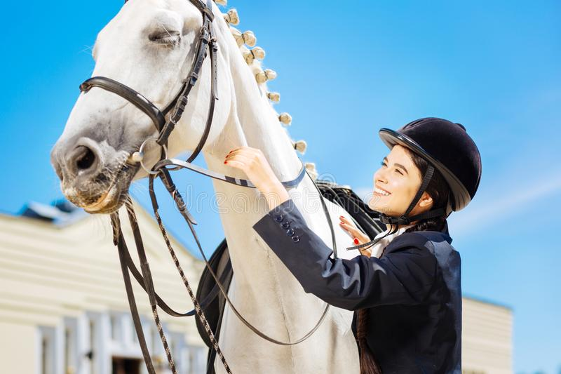 Beaming female rider taking care of her brown racehorse stock image