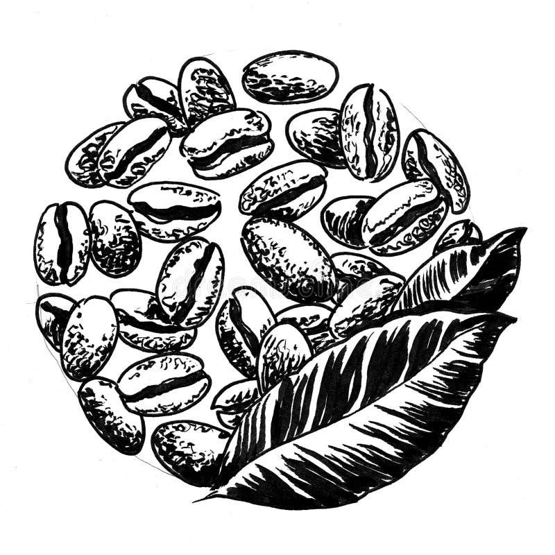 bean śniadanie kawa ideał wyizolował makro nadmiar białych royalty ilustracja