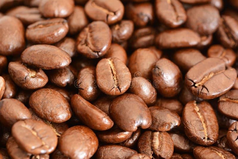 Download Bean śniadanie Kawa Ideał Wyizolował Makro Nadmiar Białych Obraz Stock - Obraz złożonej z energia, słoistość: 57664139