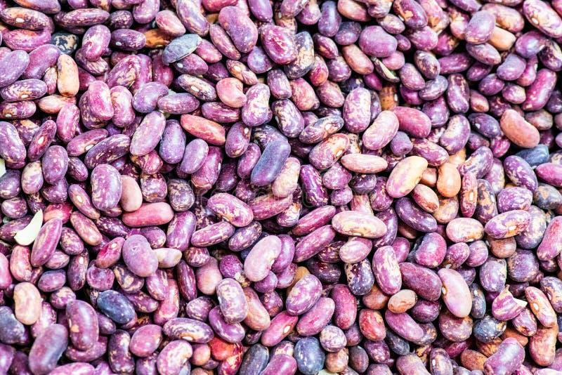 Bean beans are abundant. Vegetarian diet food stock photography