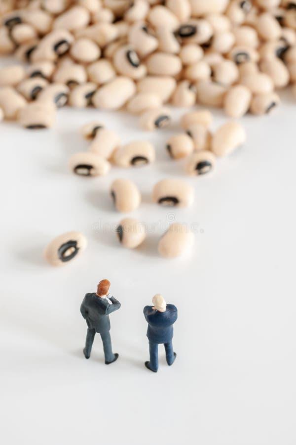 Bean Counting incorporado imagem de stock royalty free