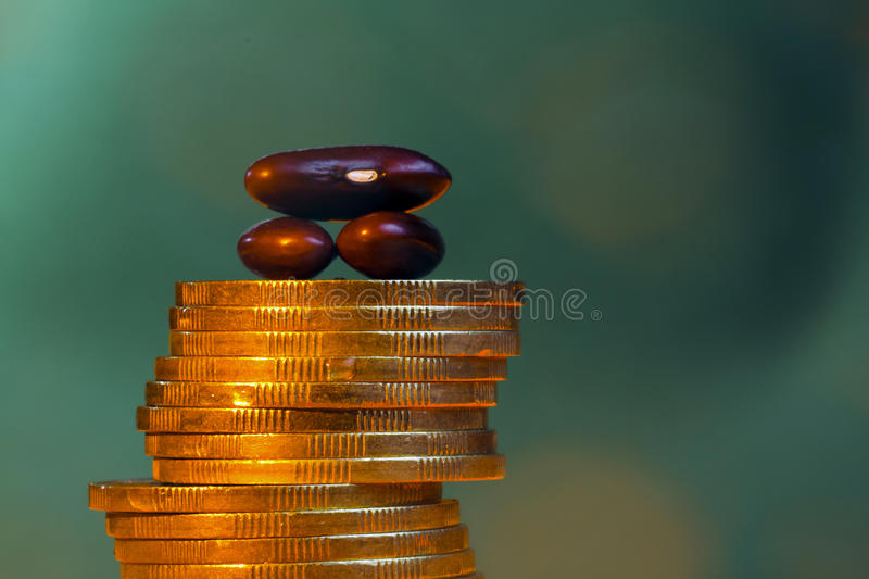 Bean and money. Brown bean and gold money stock photo