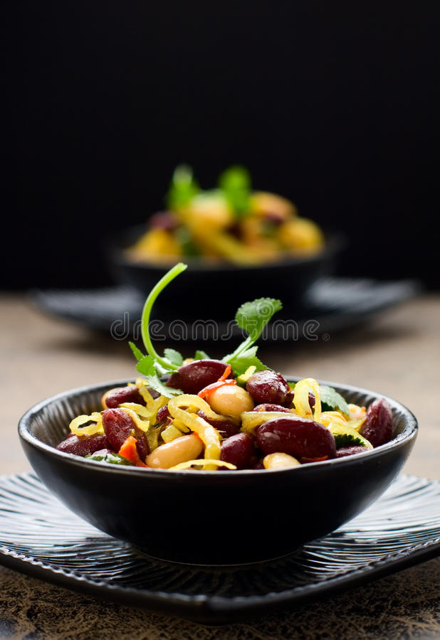 Bean salad. With onion, parsley and garlic in lemon vinaigrette royalty free stock image
