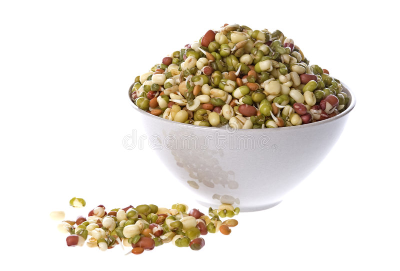 Bean Salad. Isolated image of Bean Salad in a bowl royalty free stock images