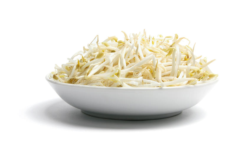 Download Bean Sprouts stock photo. Image of sprouts, still, asian - 18827892