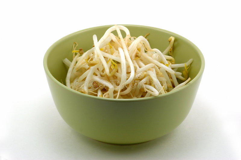 Download Bean sprouts stock photo. Image of green, healthy, food - 5421460