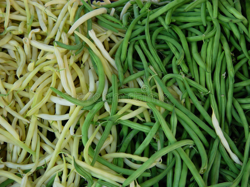 Bean String Obraz Royalty Free
