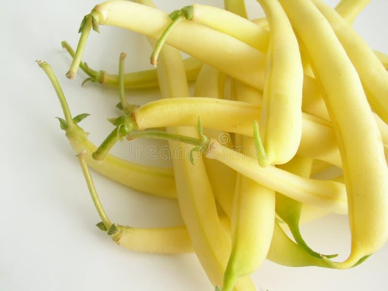 Download Bean string zdjęcie stock. Obraz złożonej z produce, żywienioniowy - 137702