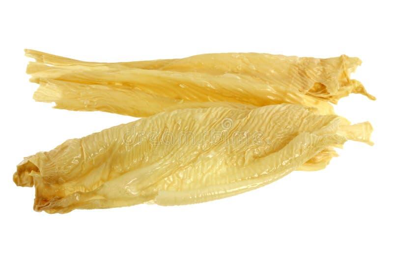 beancurd płótno suszący skóry tofu yuba zdjęcie royalty free