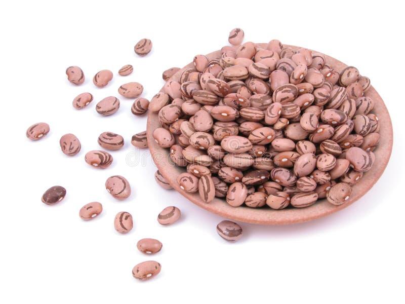 Beans stock photo