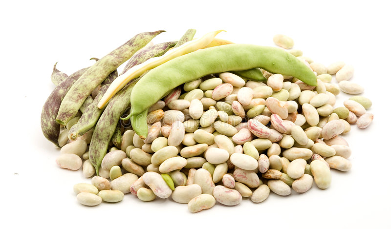 Beans stock image