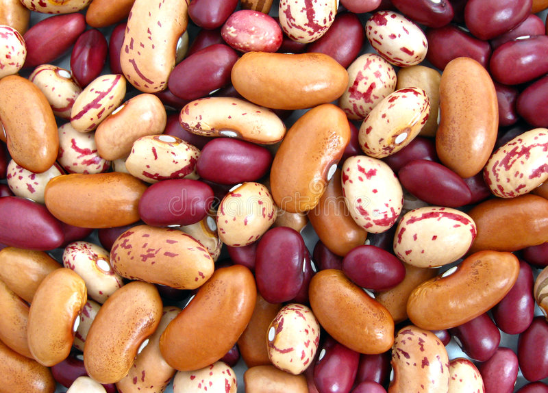 Download Beans stock image. Image of detail, uncooked, healthy - 6531405