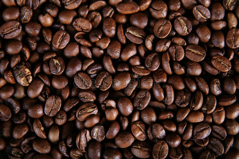 Beans of coffee. A beans of coffee, arabica type royalty free stock image