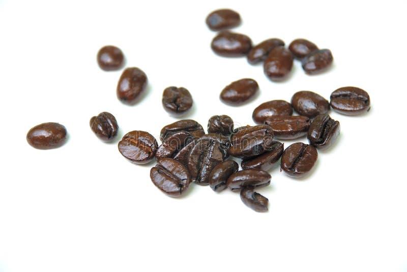 beans coffee royaltyfri fotografi