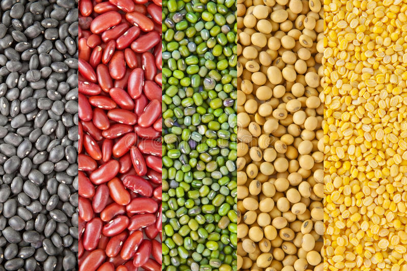 Beans collection stock photography
