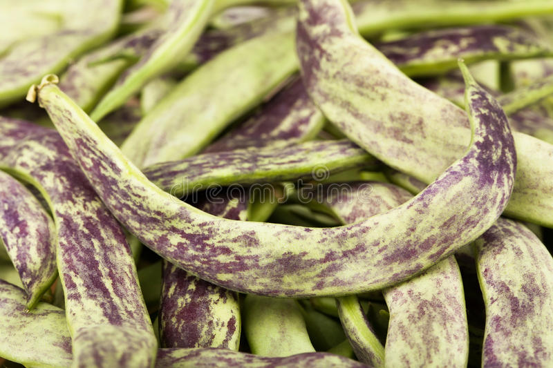 Download Beans Flat Stock Image - Image: 32953481