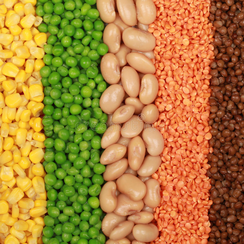 Free Beans, Lentils, Peas And Corn Royalty Free Stock Photography - 25751967