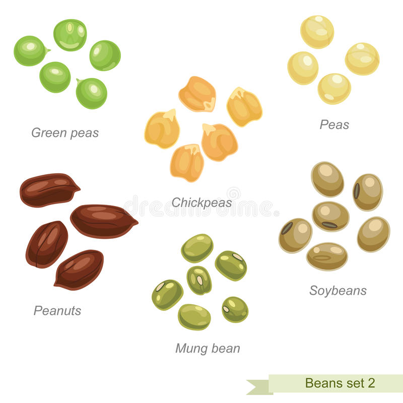 Beans and peas second icon set. Solid fill vector icons set with names stock illustration