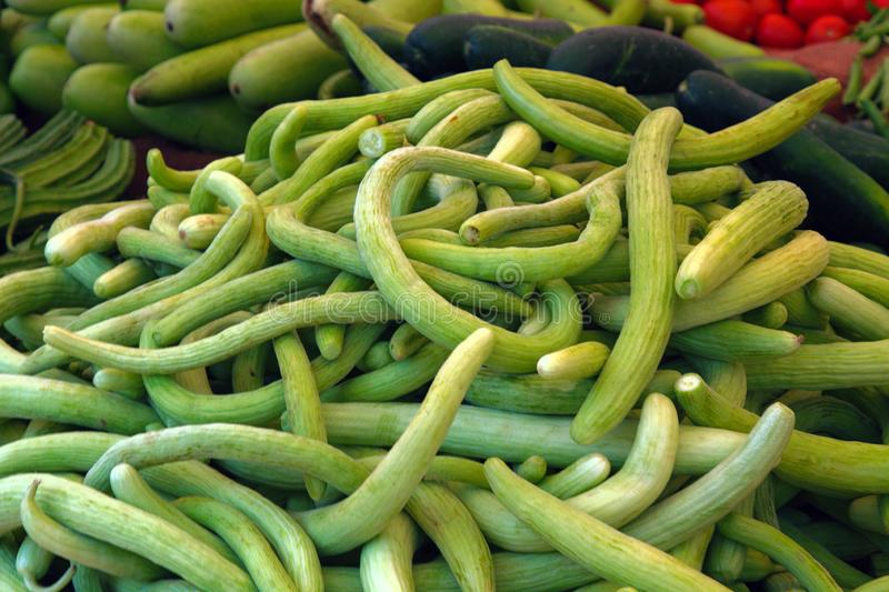 Beans in pods. Are piled on picturesque lot. Squashes. Vegetables in the Indian market royalty free stock image
