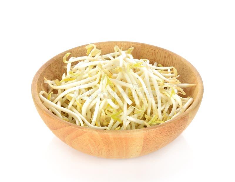 Beansprout na bacia de madeira no fundo branco fotografia de stock