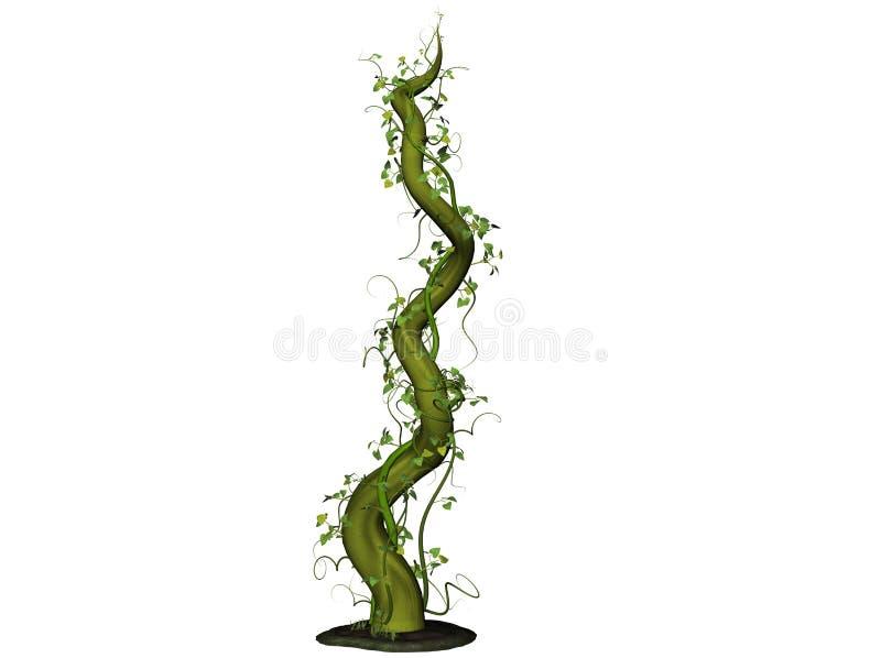 Beanstalk crescente ilustração stock