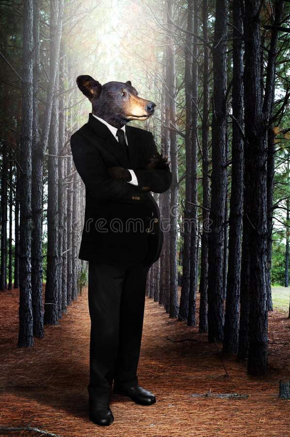 Download Bear stock image. Image of environmental, trees, business - 18661249
