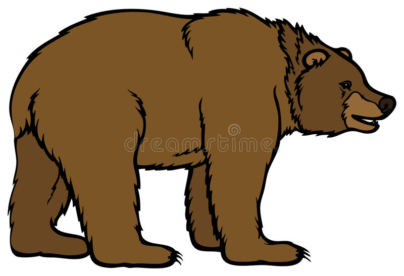 Bear. Brown Bear illustration animal chilrden