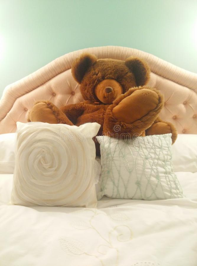 Bear on Bed stock images