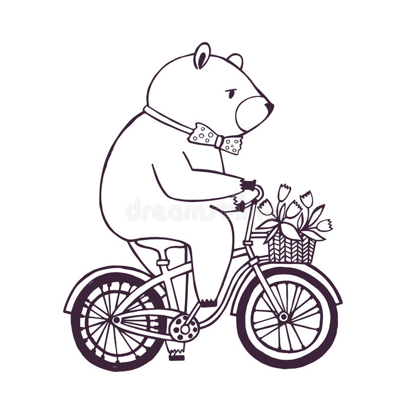 Bear on the bicycle with basket and flowers. Cartoon contour Illustration on white background. vector illustration