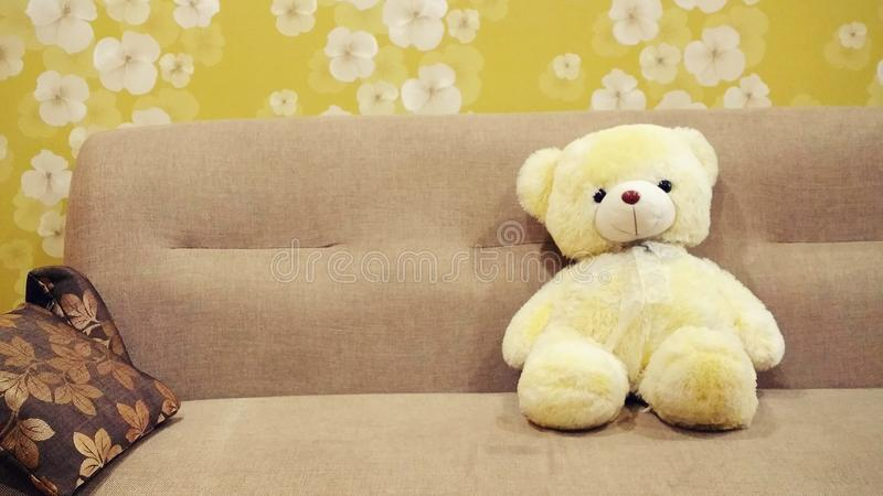 Bear, Brown, Children royalty free stock photo