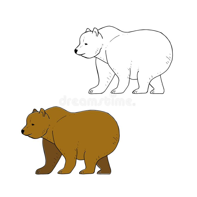 Bear Coloring Pages Realistic | Bear coloring pages, Animal ... | 800x800