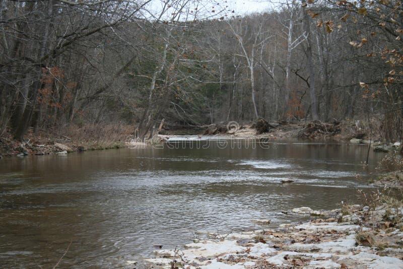 Bear Creek i Southern Missouri 2019 III royaltyfri fotografi
