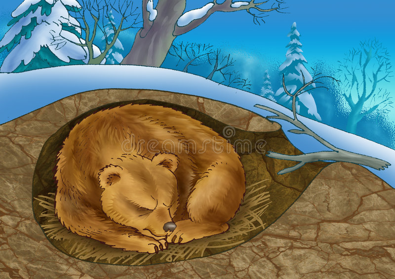 Download Bear in a den stock illustration. Image of mammalian, environment - 7937209