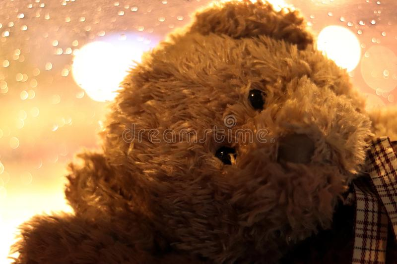 Bear doll face close up, Face Teddy Bear, the image of loneliness Selective Focus. The Bear doll face close up, Face Teddy Bear, the image of loneliness stock photography