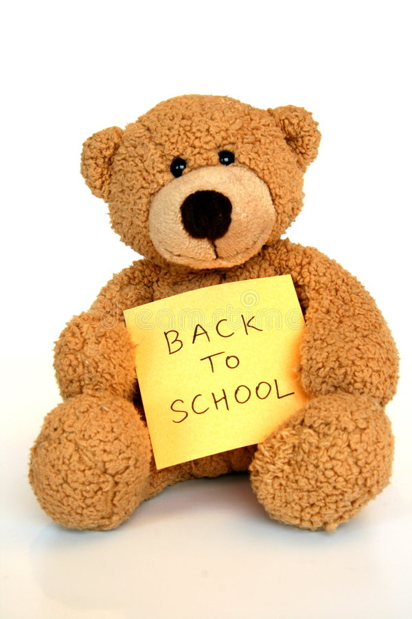 Bear going back to school royalty free stock photography