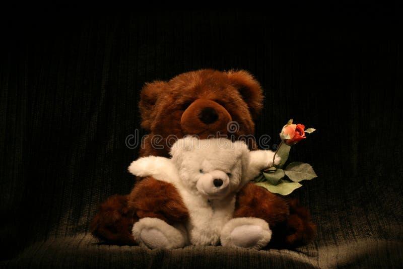 Bear Hug Rose royalty free stock photos